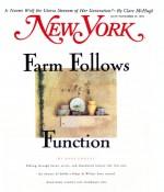 New_York_Nov_93